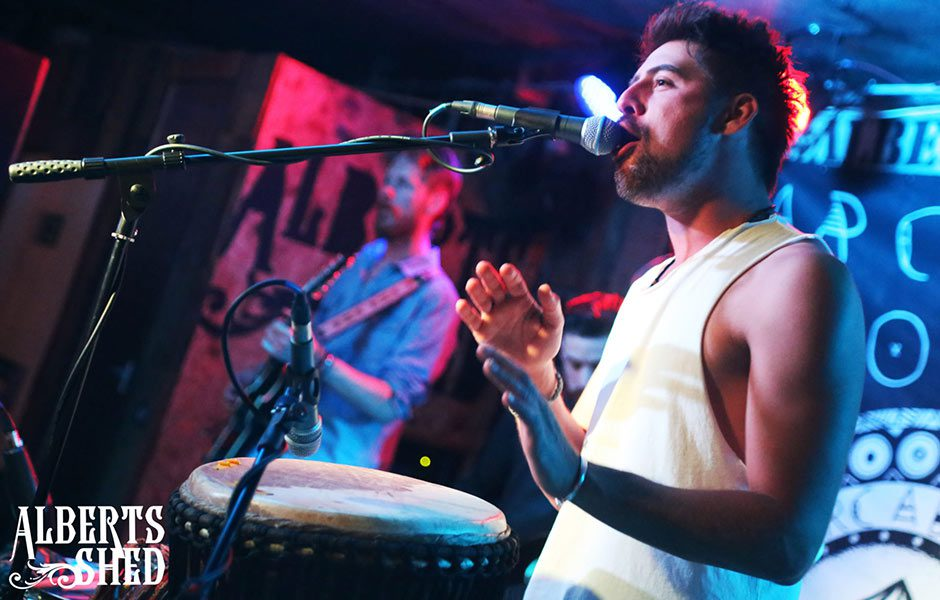 Arcadia Roots Performing at Albert's Shed Shrewsbury Live Music Bar & Venue